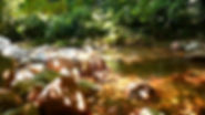 la cachiyacu-madre3.jpg