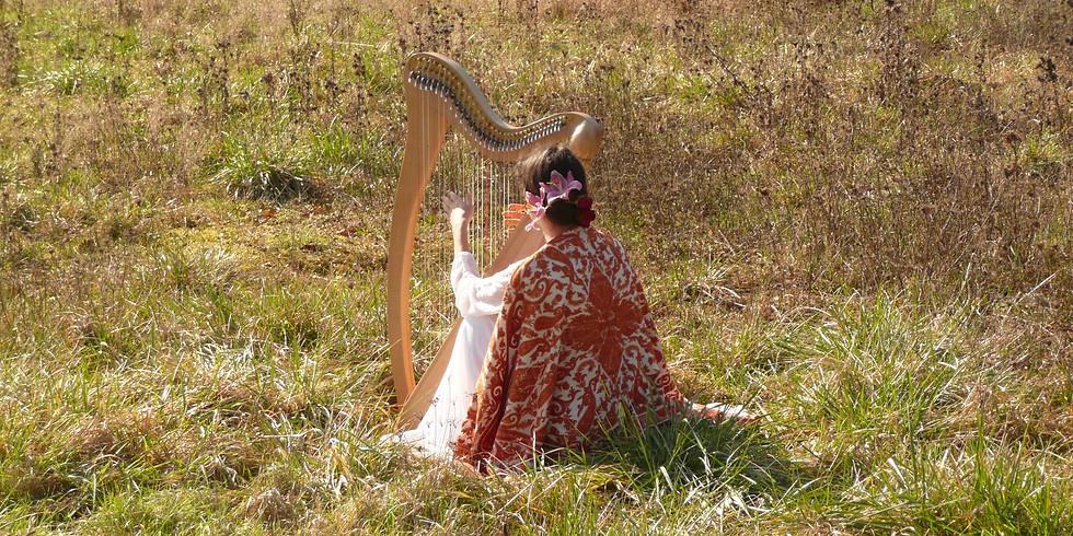 """""""La Féconde"""" Lecture et voyage musical dans la nature"""