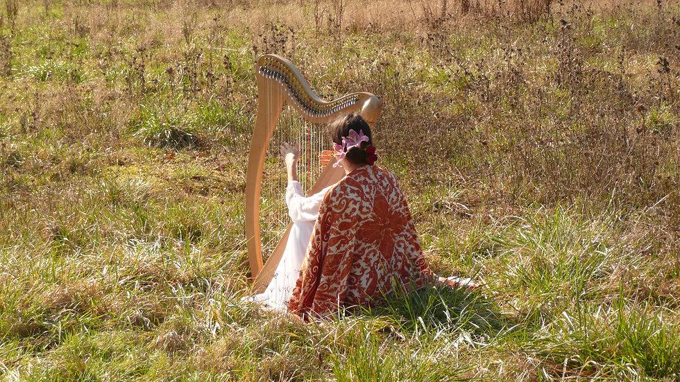 lucille aimée-harpe.JPG