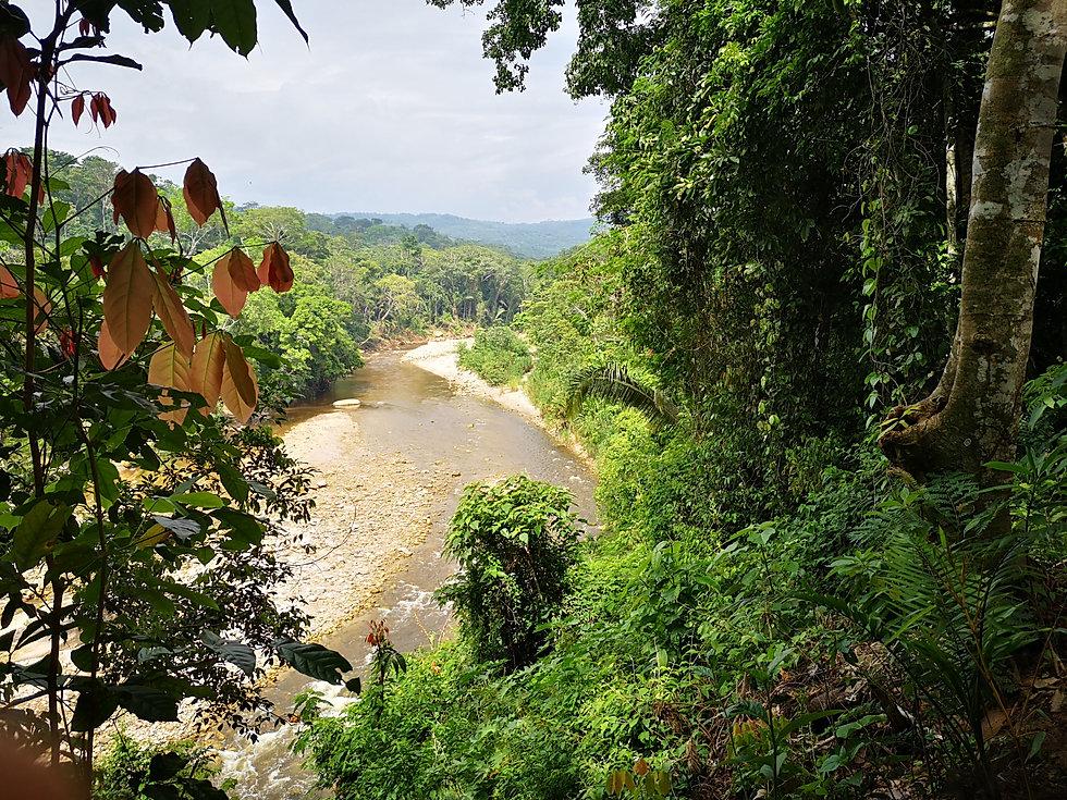 Lucila Mamita, Nova Terra, Haute Amazoni