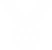 MedalIcon-min.png