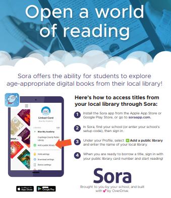 sora_public_library.png