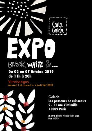 AFFICHE 2  EXPO carla 2019.jpg