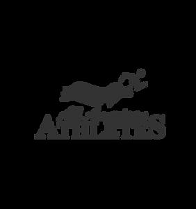 All American Athletes Logo