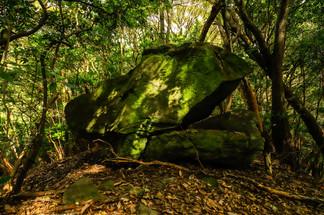国東 妙見岩