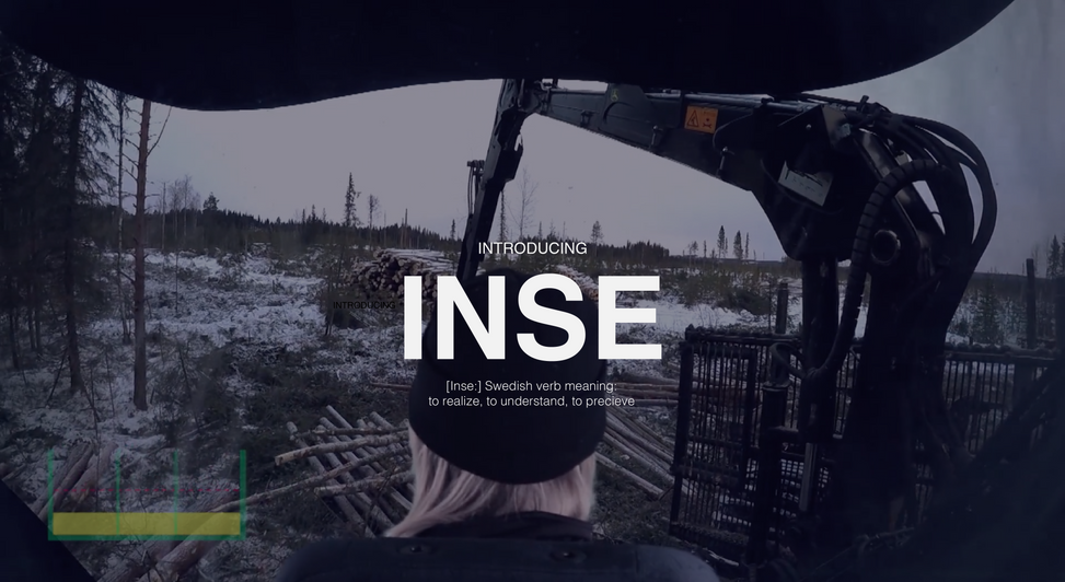 IntroducingINSE-01.png