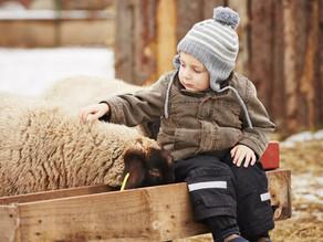 Les enfants parlent des animaux