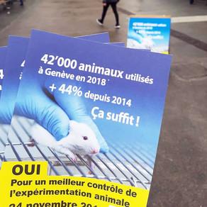 Expérimentation animale : un meilleur contrôle réclamé à Genève