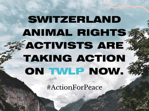TWLP : une appli pour les militants