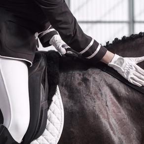 Le bien-être du cheval… et celui de la filière équine