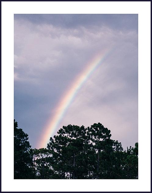 SO RAINBOW PRINT