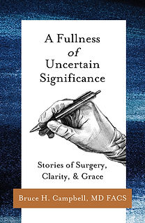 A Fullness of Uncertain Significance_2D
