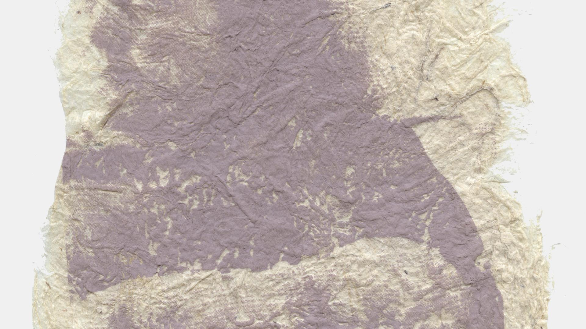 Photo Silk Screen on Handmade Paper 2015