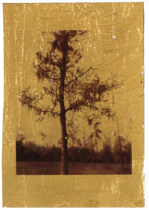 Alternative Inkjet Print on Gold Leaf 2014