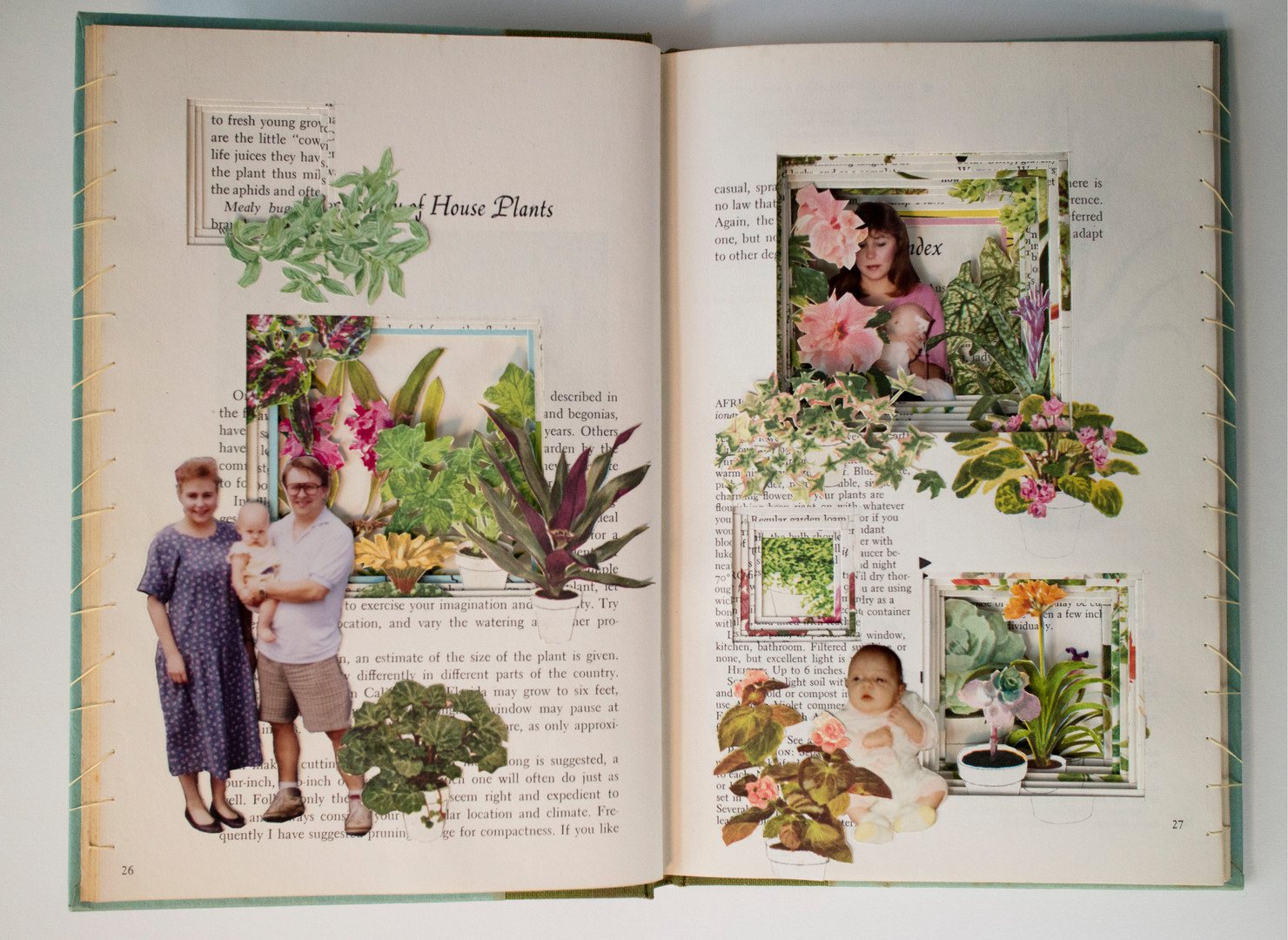 The Woman's Day Book of House Plants, 2019