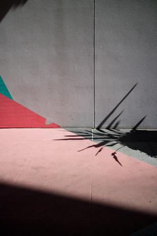 pinkshadow.jpg