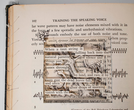 Training the Speaking Voice detail