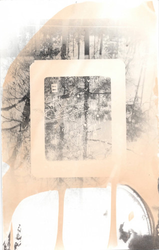 toned silver gelatin print
