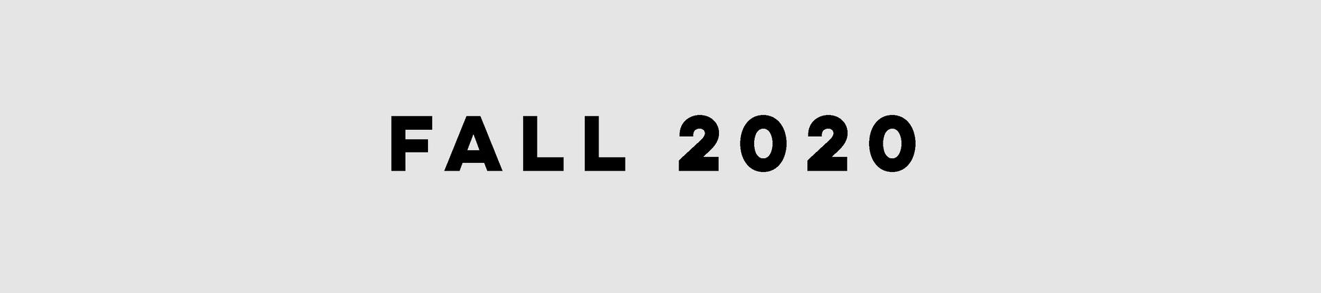 OGI Fall 2020