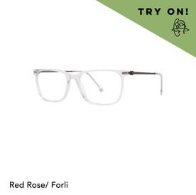 VTO Red Rose Forli
