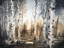Svensk skog (Såld)