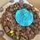 Thumbnail: Personalised Cookie Pie