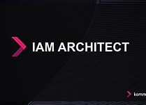 IAM Architect-100.jpg