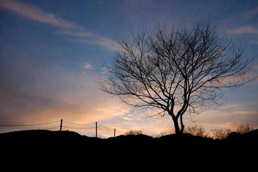 沼田運動公園の夕景