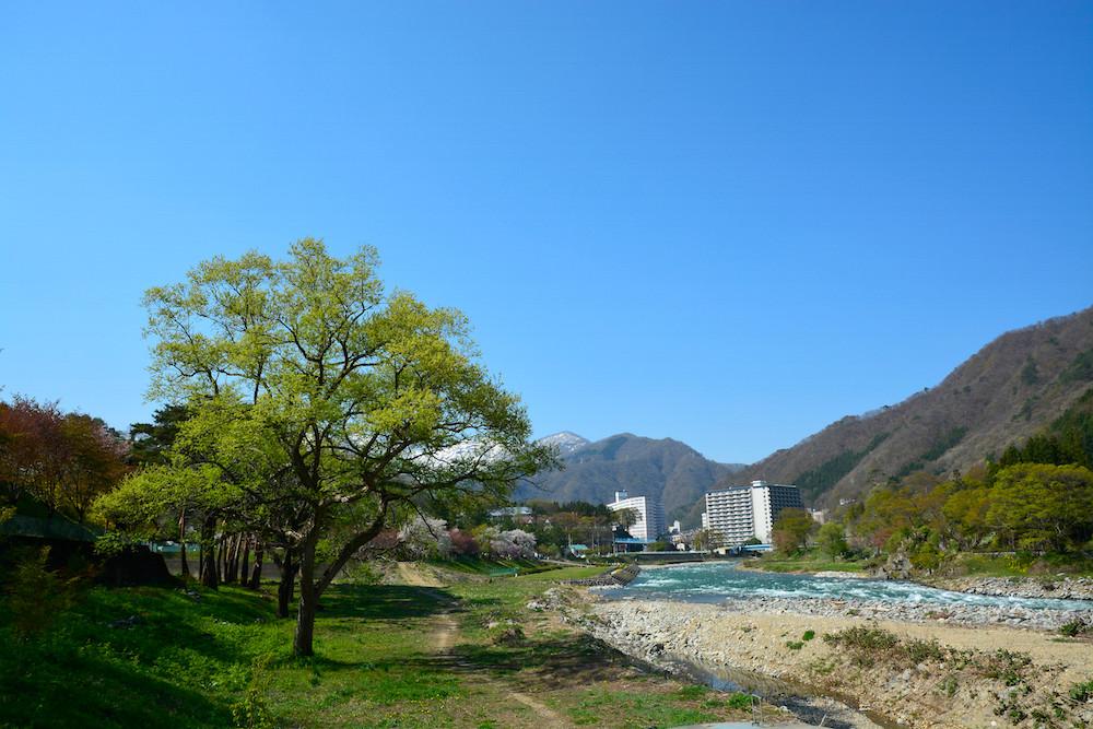 初春の利根川