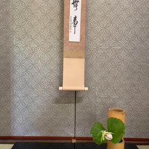 観音寺の花まつり