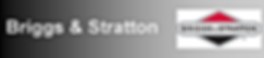 oficial-banner-briggs-stratton.png