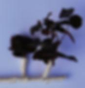 ROSAL 1.jpg