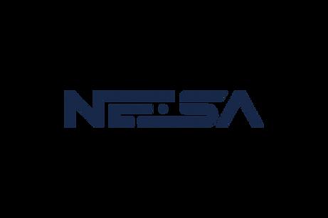 nesa solutions logo.png