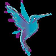 colibri2.png
