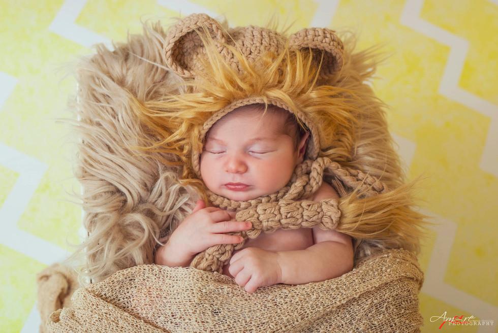 Stefano Junior   Foto Newborn Neonati Na