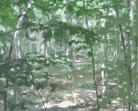 Birch Clearing 20x16 sg.jpg