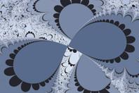 Gray Petals