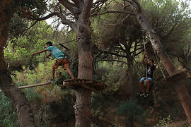 Arborismo [Figueira da Foz; Albufeira; L