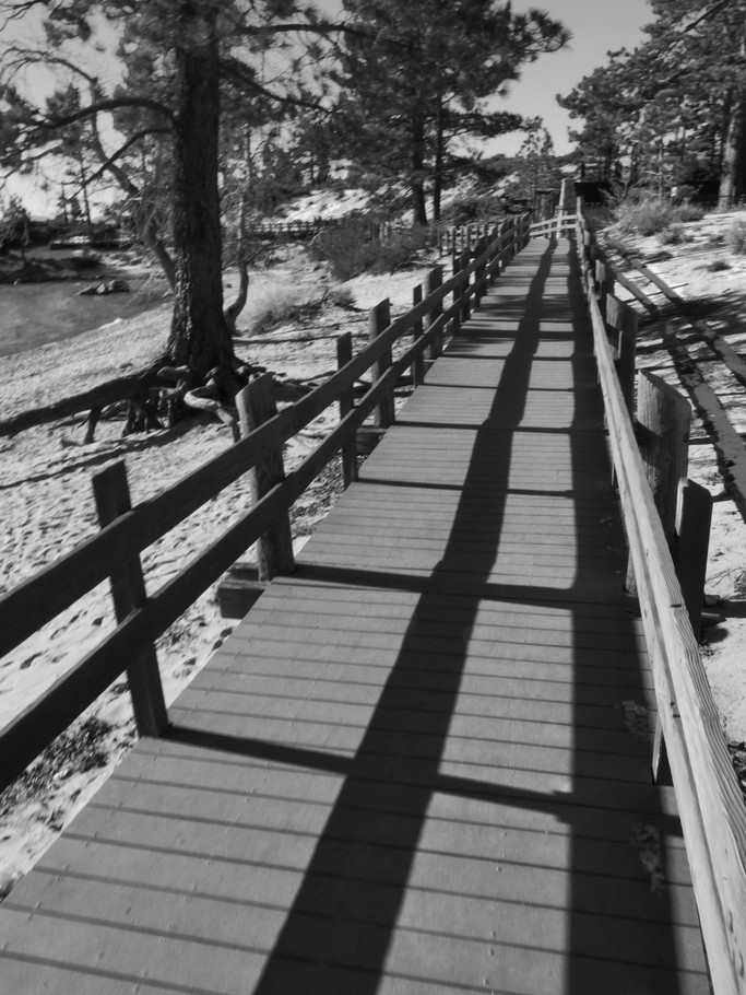 Long walk on a cold day LT BW.jpg