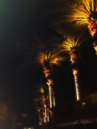 Night Palms-1517256943153.jpg