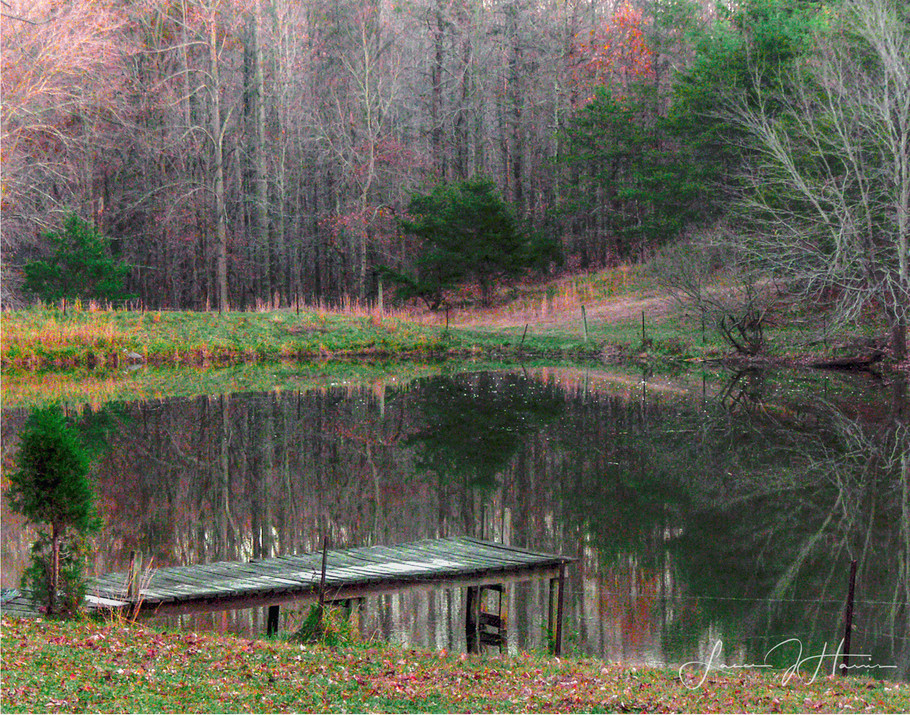 Reflections on the lake-1516496193496.jpg