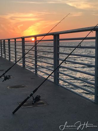 fishing poles 3352-Edit-1508889418273.jpg