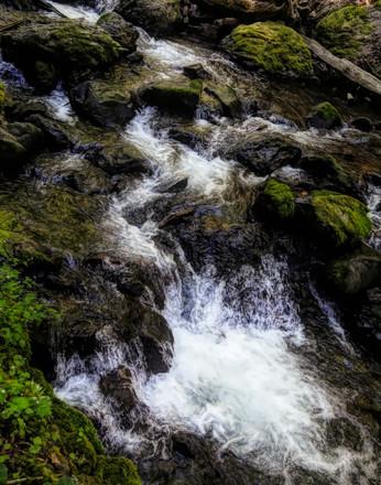 River runs oil painting.jpg