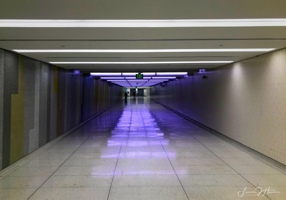 Color hallway LAX-1516413366685.jpg