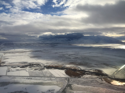 From the Plane Mammoth