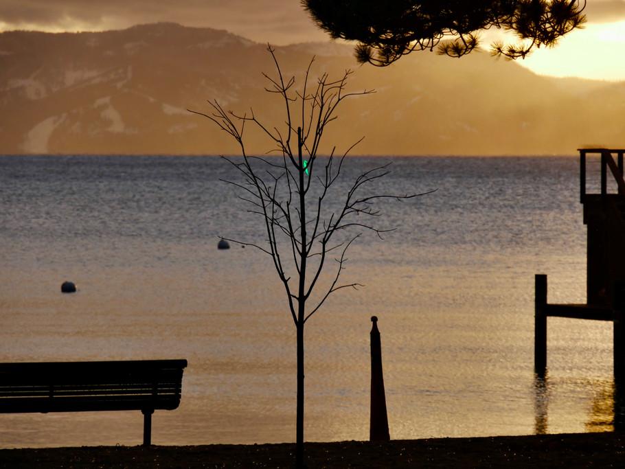 Green tag Sunset LT.jpg