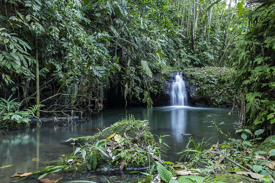 Cascada La Moneda, escondida entre guadales encontramos agua cristalina rodeada por la naturaleza