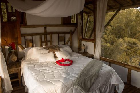Una noche romántica en nuestra Casa del Árbol