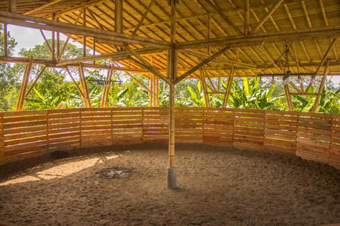 El Picadero; el lugar donde se entrenan los caballos Paso Fino