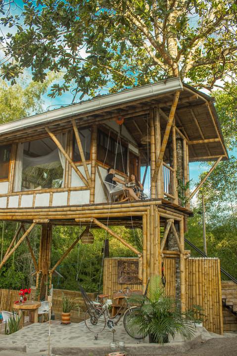 Nuesta Casa del Árbol